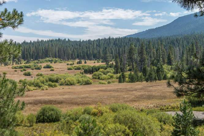 132 Boulder Dr Clio CA 96106-small-006-36-DSC 9843-666x445-72dpi