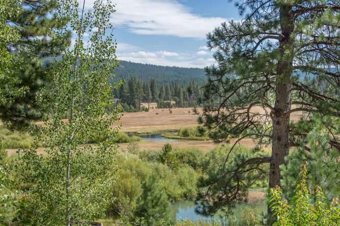 132 Boulder Dr Clio CA 96106-small-063-26-DSC 9840-666x445-72dpi