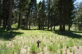 945 Prospector Dr, Whitehawk Ranch